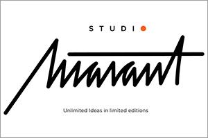 minimasterpiece-studio-marant